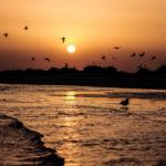 Family Safari zu den schönsten Riffen und Inseln Hurghadas